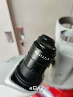 OLYMPUS Microscope SZ61 45 degree+New wf 10x eyepiece+light+Stand #ship EXPRESS